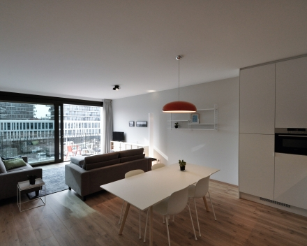 Large: open kitchen, dining and living area